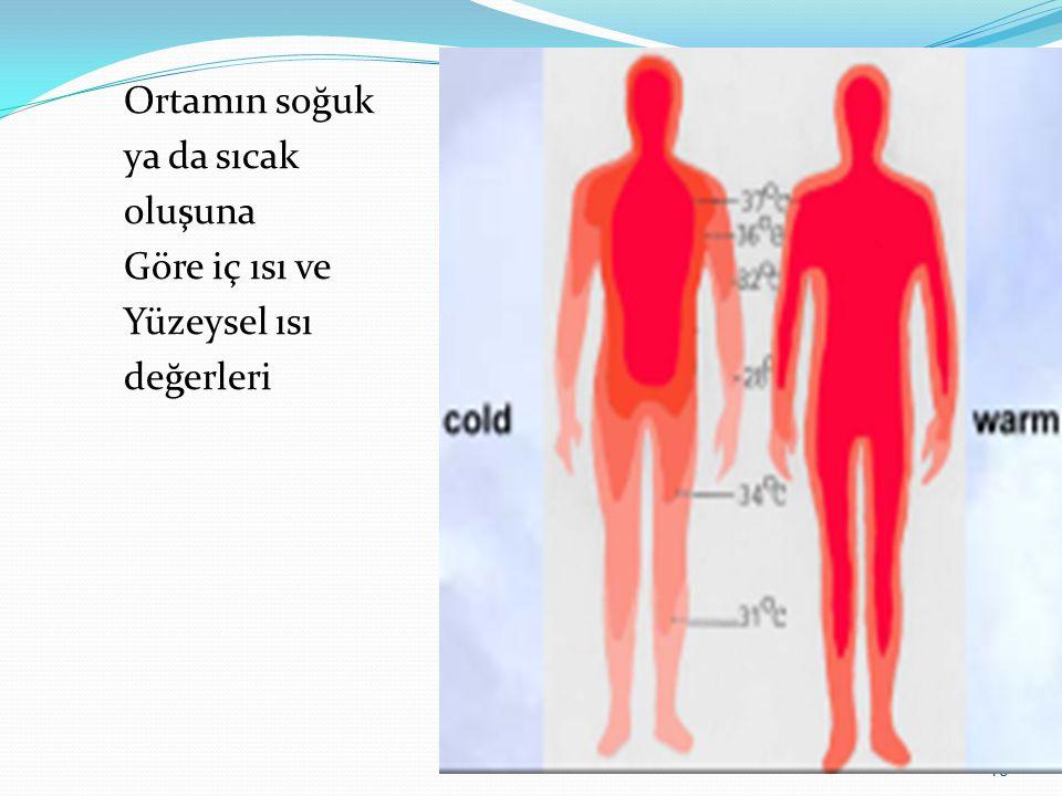 15 Ortamın soğuk ya da sıcak oluşuna Göre iç ısı ve Yüzeysel ısı değerleri