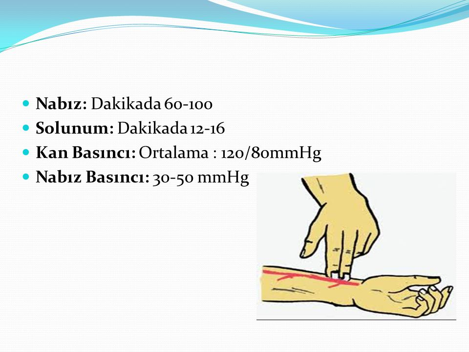 Nabız: Dakikada 60-100 Solunum: Dakikada 12-16 Kan Basıncı: Ortalama : 120/80mmHg Nabız Basıncı: 30-50 mmHg