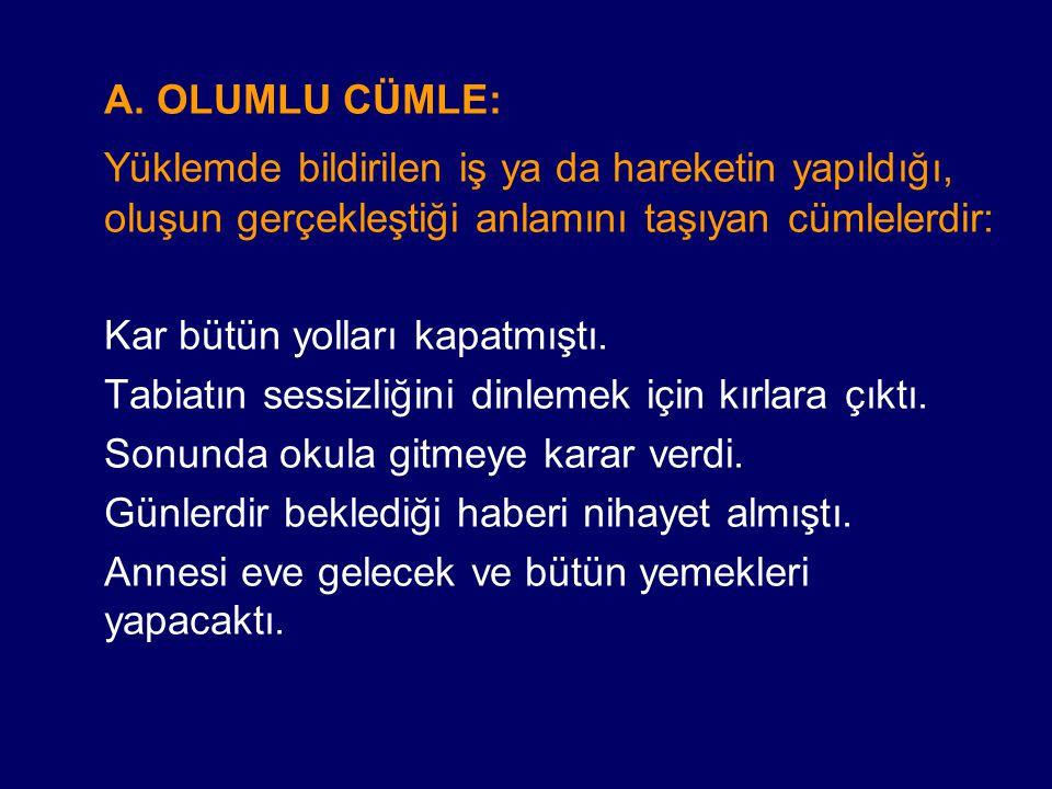 ÖRNEKLER: İntibah romanının yazarı Namık Kemal'dir.