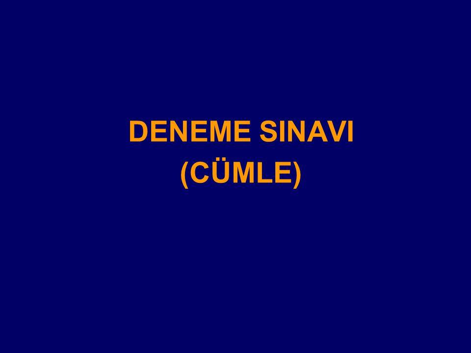 DENEME SINAVI (CÜMLE)