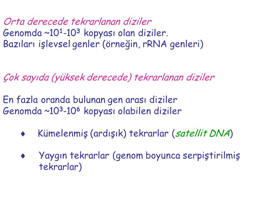 Orta derecede tekrarlanan diziler Genomda ~10 1 -10 3 kopyası olan diziler. Bazıları işlevsel genler (örneğin, rRNA genleri) Çok sayıda (yüksek derece