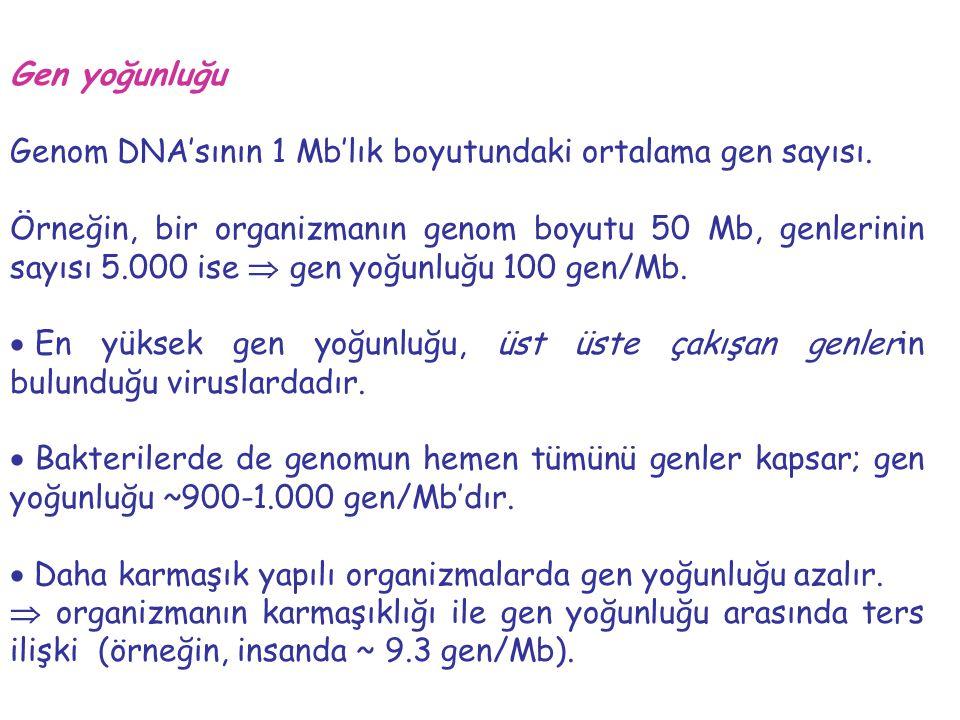 Gen yoğunluğu Genom DNA'sının 1 Mb'lık boyutundaki ortalama gen sayısı. Örneğin, bir organizmanın genom boyutu 50 Mb, genlerinin sayısı 5.000 ise  ge