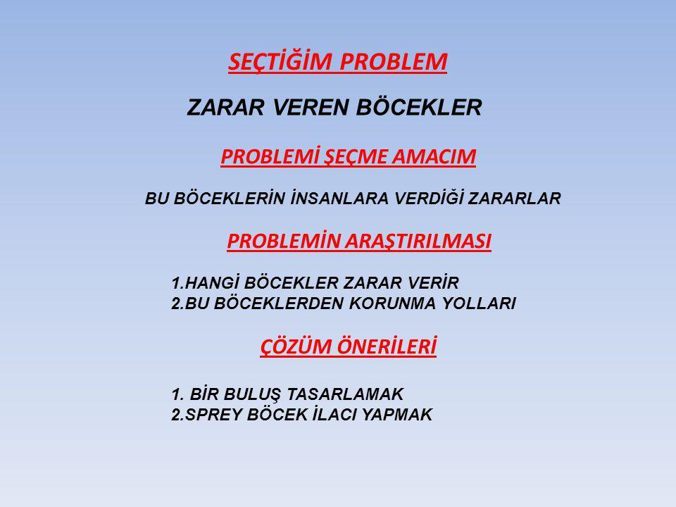 SEÇTİĞİM PROBLEM ZARAR VEREN BÖCEKLER PROBLEMİ ŞEÇME AMACIM BU BÖCEKLERİN İNSANLARA VERDİĞİ ZARARLAR PROBLEMİN ARAŞTIRILMASI 1.HANGİ BÖCEKLER ZARAR VE