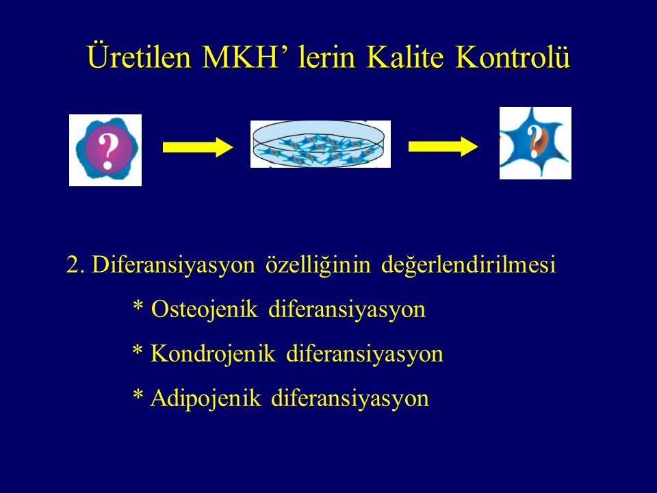 2. Diferansiyasyon özelliğinin değerlendirilmesi * Osteojenik diferansiyasyon * Kondrojenik diferansiyasyon * Adipojenik diferansiyasyon