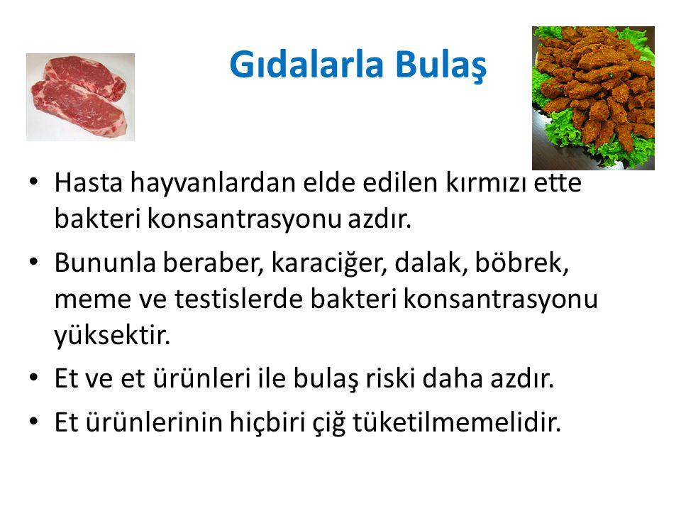 Gıdalarla Bulaş Hasta hayvanlardan elde edilen kırmızı ette bakteri konsantrasyonu azdır. Bununla beraber, karaciğer, dalak, böbrek, meme ve testisler