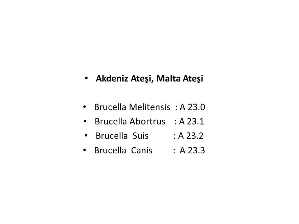 Brucella Melitensis : A 23.0 Brucella Abortrus : A 23.1 Brucella Suis : A 23.2 Brucella Canis : A 23.3