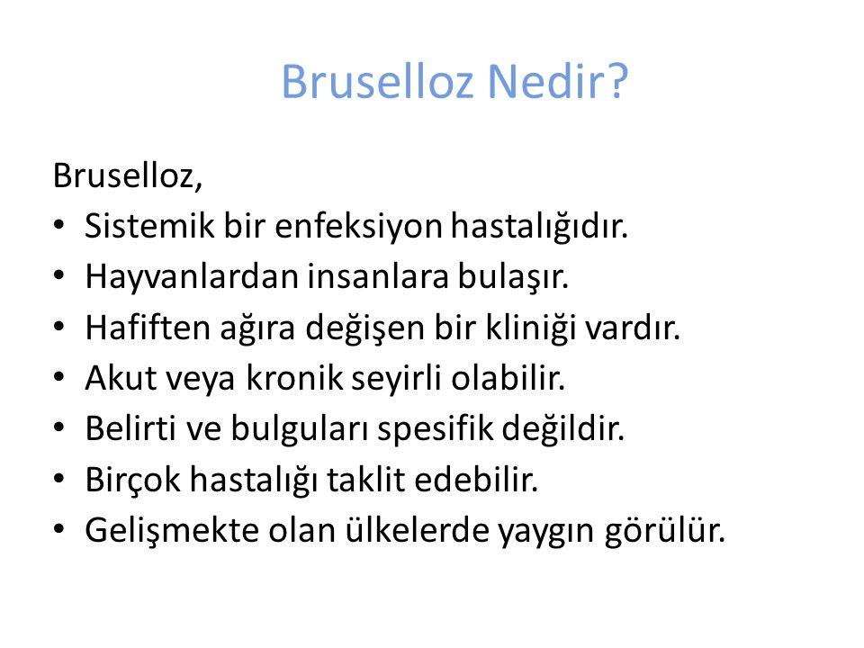 Bruselloz Nedir? Bruselloz, Sistemik bir enfeksiyon hastalığıdır. Hayvanlardan insanlara bulaşır. Hafiften ağıra değişen bir kliniği vardır. Akut veya