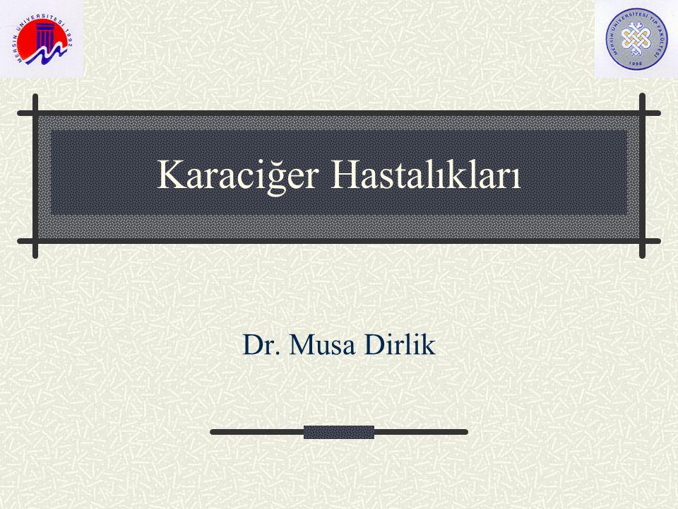 Karaciğer Hastalıkları Dr. Musa Dirlik