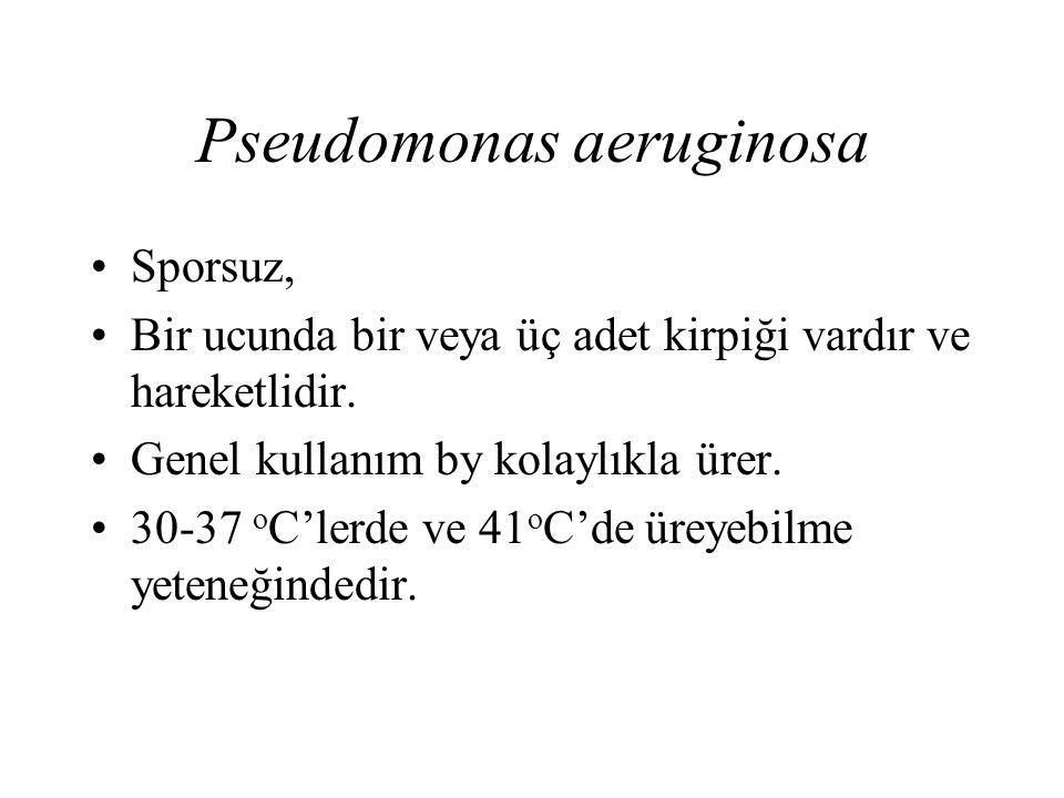 Pseudomonas aeruginosa Sporsuz, Bir ucunda bir veya üç adet kirpiği vardır ve hareketlidir. Genel kullanım by kolaylıkla ürer. 30-37 o C'lerde ve 41 o