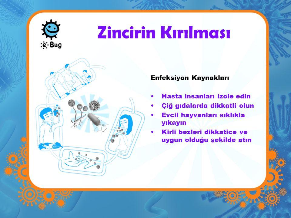 Zincirin Kırılması Enfeksiyon Kaynakları Hasta insanları izole edin Çiğ gıdalarda dikkatli olun Evcil hayvanları sıklıkla yıkayın Kirli bezleri dikkatice ve uygun olduğu şekilde atın
