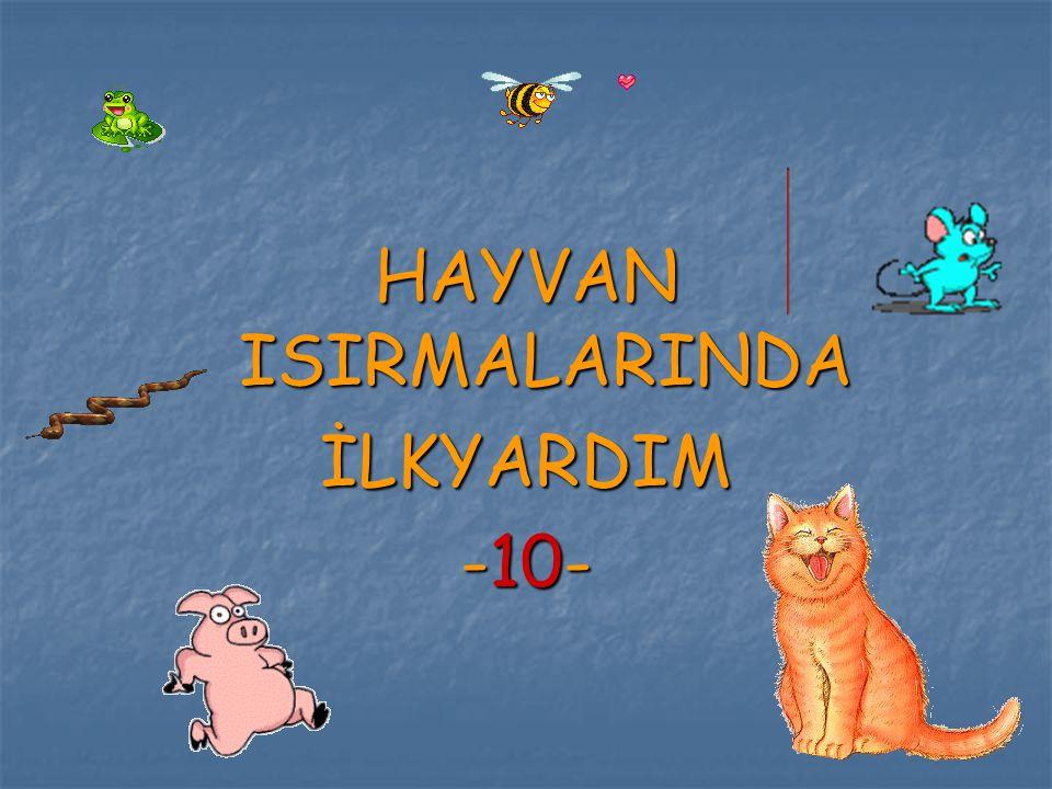 HAYVAN ISIRMALARINDA İLKYARDIM -10-