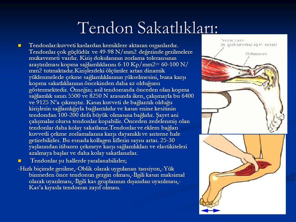 Tendon Sakatlıkları: Tendonlar:kuvveti kaslardan kemiklere aktaran organlardır. Tendonlar çok güçlüdür ve 49-98 N/mm2 değerinde gerilmelere mukavemeti