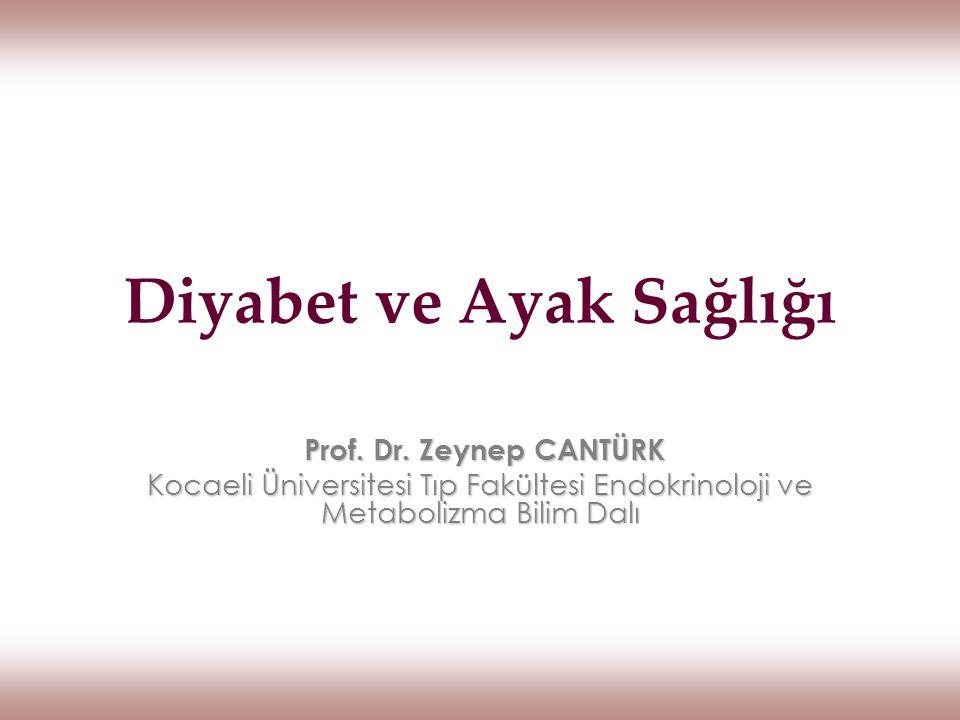 Diyabet ve Ayak Sağlığı Prof. Dr. Zeynep CANTÜRK Prof. Dr. Zeynep CANTÜRK Kocaeli Üniversitesi Tıp Fakültesi Endokrinoloji ve Metabolizma Bilim Dalı