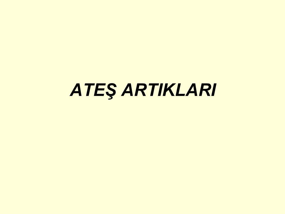 ATEŞ ARTIKLARI
