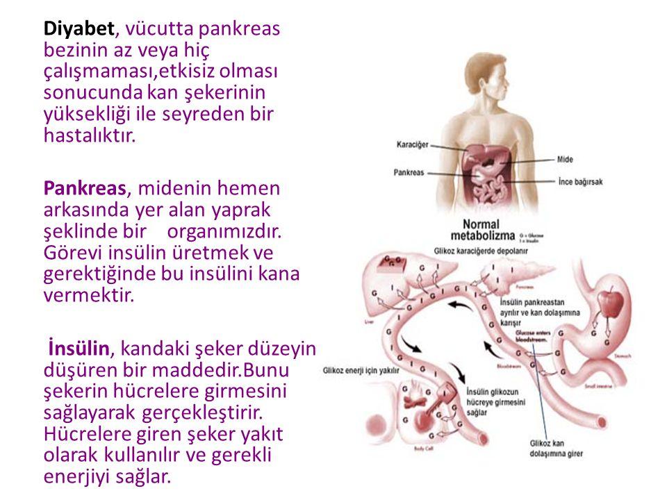 Diyabet, vücutta pankreas bezinin az veya hiç çalışmaması,etkisiz olması sonucunda kan şekerinin yüksekliği ile seyreden bir hastalıktır. Pankreas, mi