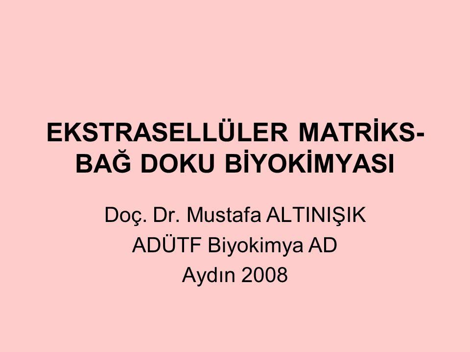 EKSTRASELLÜLER MATRİKS- BAĞ DOKU BİYOKİMYASI Doç.Dr.