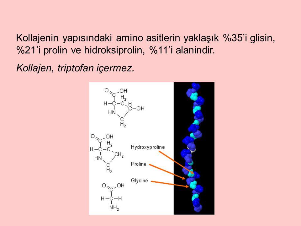 Kollajenin yapısındaki amino asitlerin yaklaşık %35'i glisin, %21'i prolin ve hidroksiprolin, %11'i alanindir.