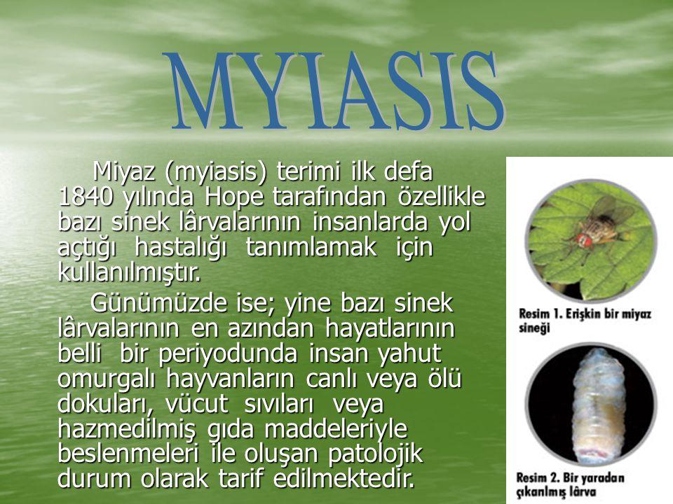 Miyaz (myiasis) terimi ilk defa 1840 yılında Hope tarafından özellikle bazı sinek lârvalarının insanlarda yol açtığı hastalığı tanımlamak için kullanı