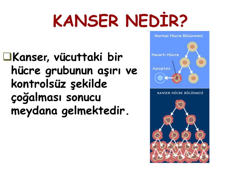  Kanse r, vücuttaki bir hücre grubunun aşırı ve kontrolsüz şekilde çoğalması sonucu meydana gelmektedir. KANSER NEDİR?