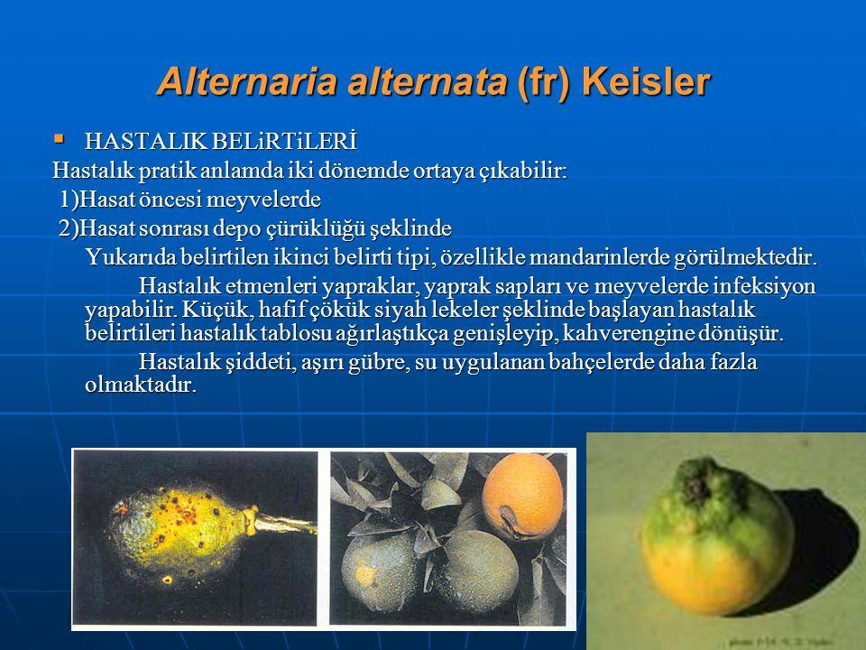 Alternaria alternata (fr) Keisler  HASTALIK BELiRTiLERİ Hastalık pratik anlamda iki dönemde ortaya çıkabilir: 1)Hasat öncesi meyvelerde 1)Hasat önces
