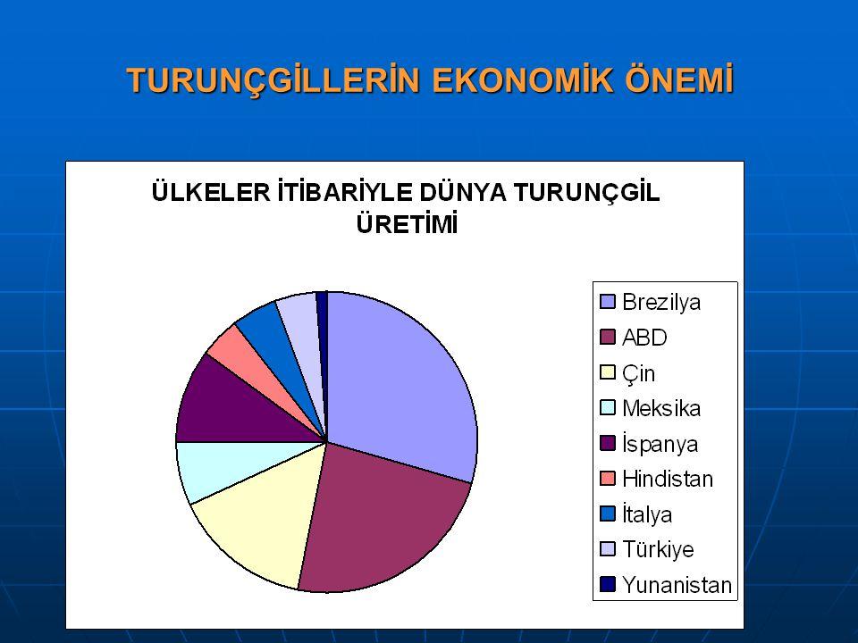 SONUÇ SONUÇ Türkiye Narenciye üretim alanlarında bitkisel üretim sürecinde kaydı yapılan fungal hastalık etmenlerinin tüm bölgelerde epidemi yapacak seviyede olmadıkları, zararlarının yetiştiricilik yapılan bölgedeki toprak, iklim-çevre ve uygulanan üreticilik koşullarına bağımlı olarak sınırlandığı tespit edilmiştir.