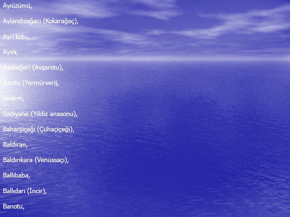 Ayıüzümü, Aylandızağacı (Kokarağaç), Ayrı kotu, Ayva, Azakeğeri (Avşarotu), Azıotu (Yermürverij, Badem, Badıyane (Yıldız anasonu), Baharçiçeği (Çuhaçiçeği), Baldıran, Baldırıkara (Venüssaçı), Ballıbaba, Ballıdarı (İncir), Banotu,