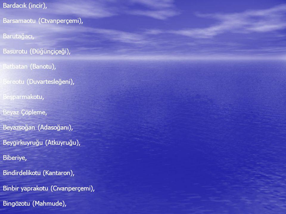 Bardacık (incir), Barsamaotu (Ctvanperçemi), Barutağacı, Basurotu (Düğünçiçeği), Batbatan (Banotu), Bereotu (Duvartesleğeni), Beşparmakotu, Beyaz Çöpleme, Beyazsoğan (Adasoğanı), Beygirkuyruğu (Atkuyruğu), Biberiye, Bindirdelikotu (Kantaron), Binbir yaprakotu (Cıvanperçemi), Bingözotu (Mahmude),