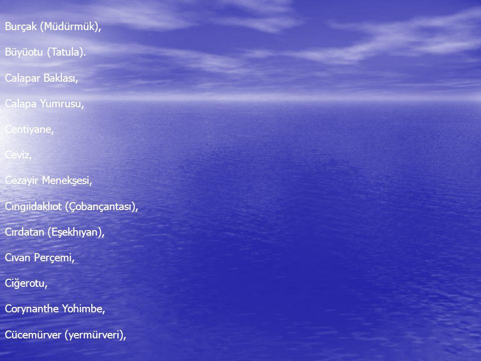 Burçak (Müdürmük), Büyüotu (Tatula). Calapar Baklası, Calapa Yumrusu, Centiyane, Ceviz, Cezayir Menekşesi, Cıngıidaklıot (Çobançantası), Cırdatan (Eşe