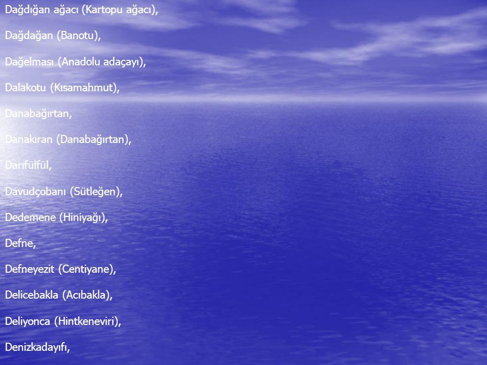 Denizüzümü, Dereotu, Develiotu (Loğusaotu), Devetabanı (Öksürükotu), Dikenüzümü (Kadıntuzluğu), Dtşotu, (+Adaçayı), Dolamaotu (Mührüsüieyman), Domuzekmeği (Yersomunu), Dövenotu (Kurşunotu), Dövülmüşavratotu, Dulauratotu, Durakotu (Dereotu), Dut, Duvar Fesleğeni,