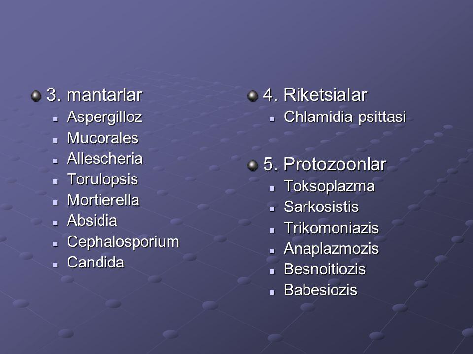 Enfeksiyona bağlı olmayan nedenler Kimyasal zehir ve ilaçlar, zehirli otlar, nitratlar, arsenik, küflenmiş yemler, fenotiazin, tetramizol, CCl-4, veratrin Hormonel sebepler Prostaglandinler Prostaglandinler Glukokortikoidler Glukokortikoidler Östrojenler Östrojenler Progesteron eksikliği Progesteron eksikliği