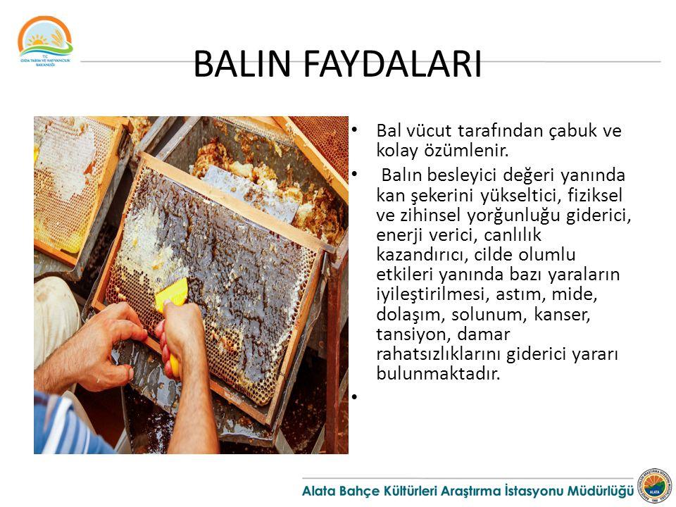 BALIN FAYDALARI Bal vücut tarafından çabuk ve kolay özümlenir. Balın besleyici değeri yanında kan şekerini yükseltici, fiziksel ve zihinsel yorğunluğu
