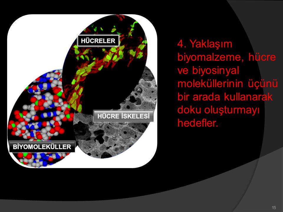 4. Yaklaşım biyomalzeme, hücre ve biyosinyal moleküllerinin üçünü bir arada kullanarak doku oluşturmayı hedefler. 15