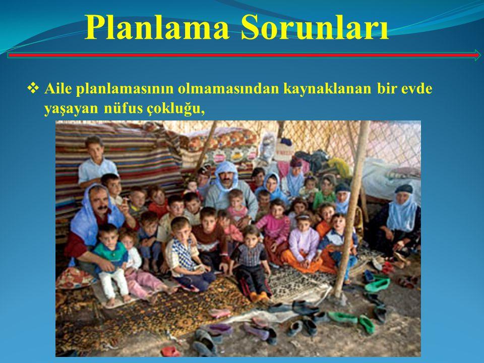 Planlama Sorunları  Aile planlamasının olmamasından kaynaklanan bir evde yaşayan nüfus çokluğu,
