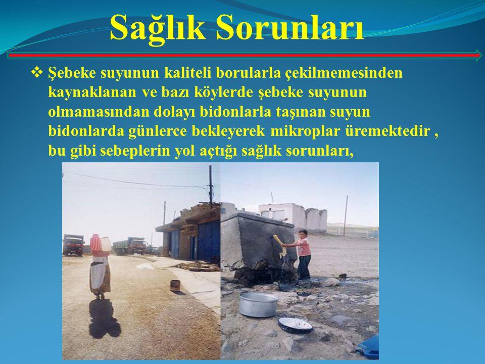 Sağlık Sorunları  Şebeke suyunun kaliteli borularla çekilmemesinden kaynaklanan ve bazı köylerde şebeke suyunun olmamasından dolayı bidonlarla taşına
