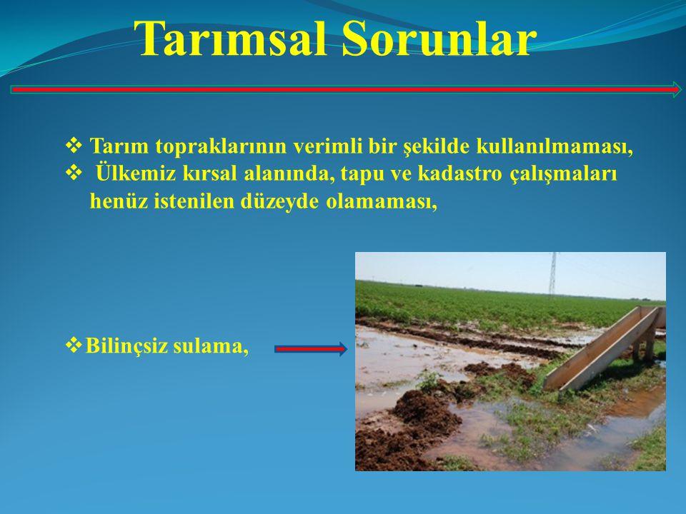 Tarımsal Sorunlar  Tarım topraklarının verimli bir şekilde kullanılmaması,  Ülkemiz kırsal alanında, tapu ve kadastro çalışmaları henüz istenilen dü