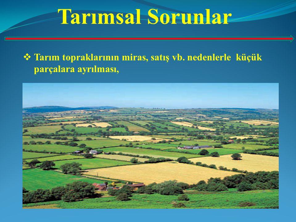 Sonuç ve Öneriler  Bütün dünyada olduğu gibi Türkiye'nin de gelişimini tamamlaması için kentsel mekanların yanında kırsal alanların da geliştirilmesi gerekir.