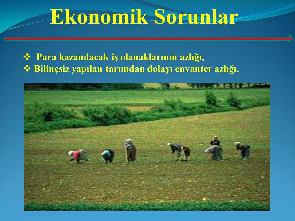 Ekonomik Sorunlar  Bölünmüş araziler yüzünden masrafın artması ve gelirin az olması,  Tarım sektöründe çalışan işçilere verilen ücretin az olması,  Kırsal kesimde yaşayan ailelerin nüfus sayısının çok olması, gelirin az olmasından dolayı yoksulluğa neden olmaktadır,  Kırsal kesimde yaşayan bir çok kişinin çok az tarlaya sahip olması veya hiç tarlasının olmaması,  Tarım kesiminde toprak ve gelir dağılımındaki dengesizlik,  Kırsal kesime yapılan yatırımın azlığı vb.