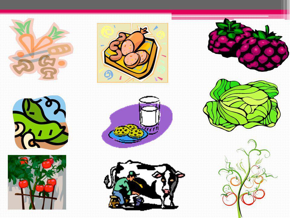 A VİTAMİNİ Havuç, kereviz, domates, taze fasulye, fıstık, avokado, baklagiller, mantar, yumurta, süt, buğday ve cevizde bulunur. Eksikliğinde gece kör