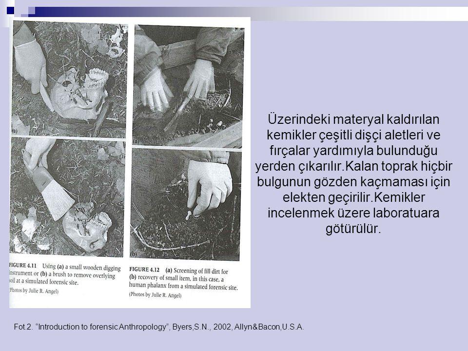 Fot. 21-22. The Human Bone Manual ,White,T.,Folkens,P.2005,Elsevier Inc.,U.S.A.