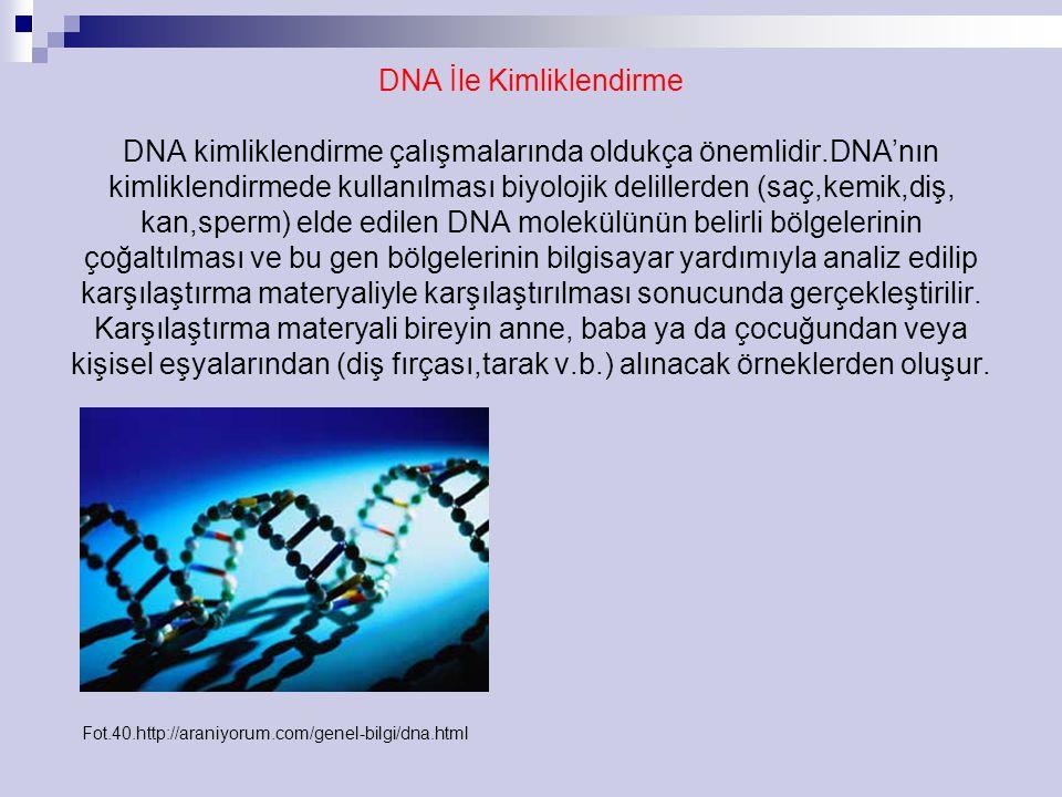 DNA İle Kimliklendirme DNA kimliklendirme çalışmalarında oldukça önemlidir.DNA'nın kimliklendirmede kullanılması biyolojik delillerden (saç,kemik,diş, kan,sperm) elde edilen DNA molekülünün belirli bölgelerinin çoğaltılması ve bu gen bölgelerinin bilgisayar yardımıyla analiz edilip karşılaştırma materyaliyle karşılaştırılması sonucunda gerçekleştirilir.