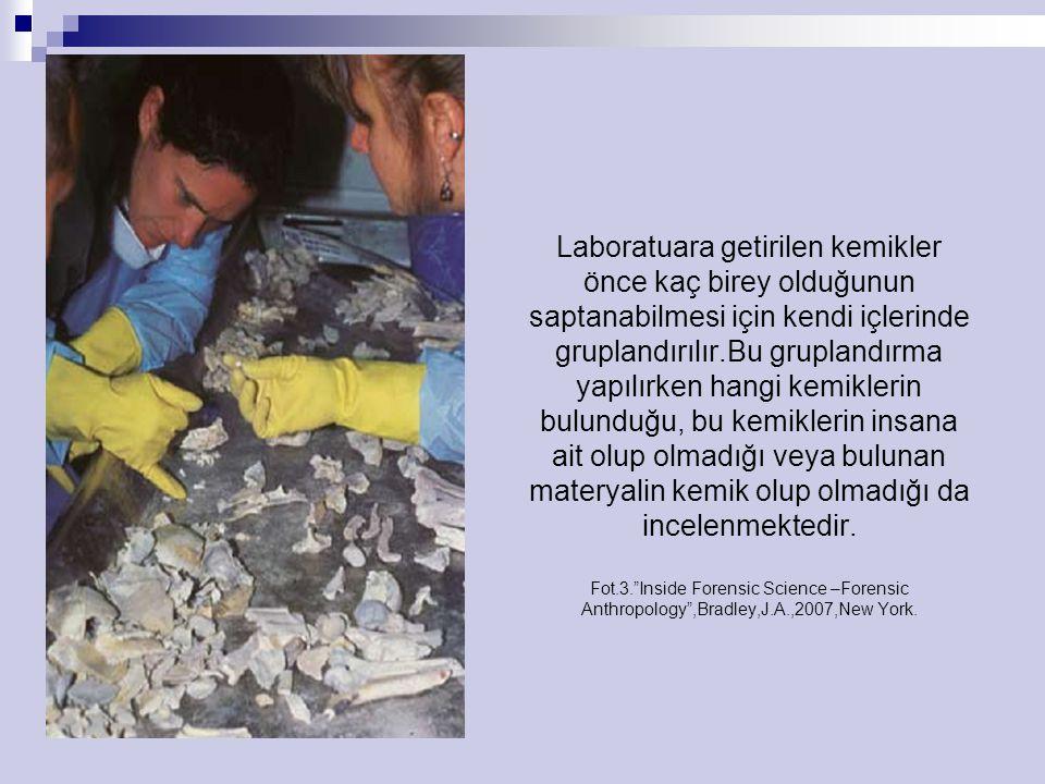 Laboratuara getirilen kemikler önce kaç birey olduğunun saptanabilmesi için kendi içlerinde gruplandırılır.Bu gruplandırma yapılırken hangi kemiklerin bulunduğu, bu kemiklerin insana ait olup olmadığı veya bulunan materyalin kemik olup olmadığı da incelenmektedir.