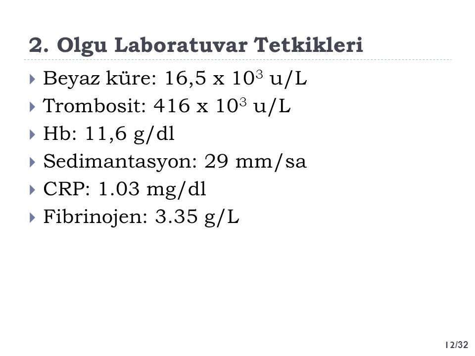12 /32 2. Olgu Laboratuvar Tetkikleri  Beyaz küre: 16,5 x 10 3 u/L  Trombosit: 416 x 10 3 u/L  Hb: 11,6 g/dl  Sedimantasyon: 29 mm/sa  CRP: 1.03