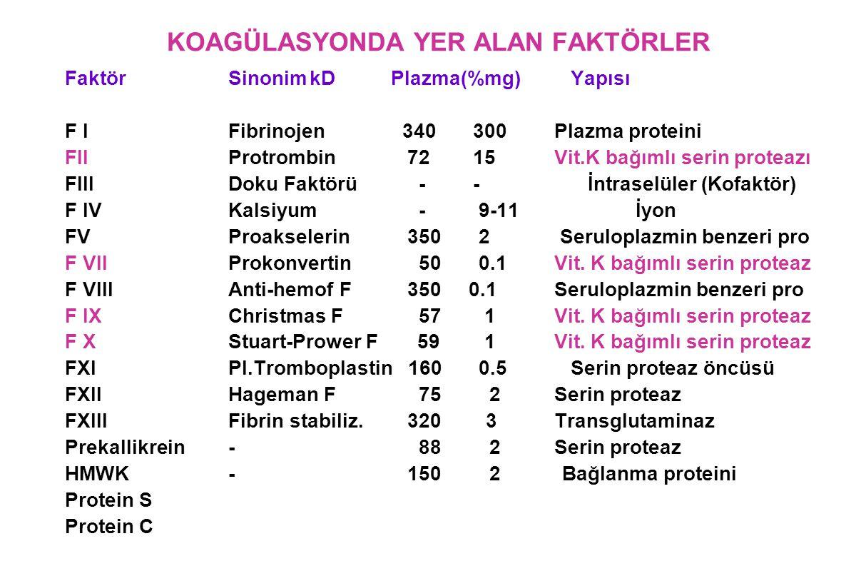 KOAGÜLASYONDA YER ALAN FAKTÖRLER FaktörSinonimkDPlazma(%mg) Yapısı F IFibrinojen 340300Plazma proteini FIIProtrombin 7215Vit.K bağımlı serin proteazı