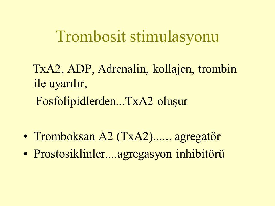 Trombosit stimulasyonu TxA2, ADP, Adrenalin, kollajen, trombin ile uyarılır, Fosfolipidlerden...TxA2 oluşur Tromboksan A2 (TxA2)...... agregatör Prost