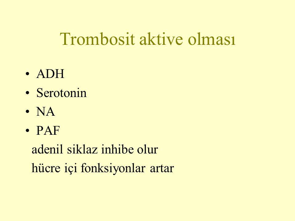 Trombosit aktive olması ADH Serotonin NA PAF adenil siklaz inhibe olur hücre içi fonksiyonlar artar