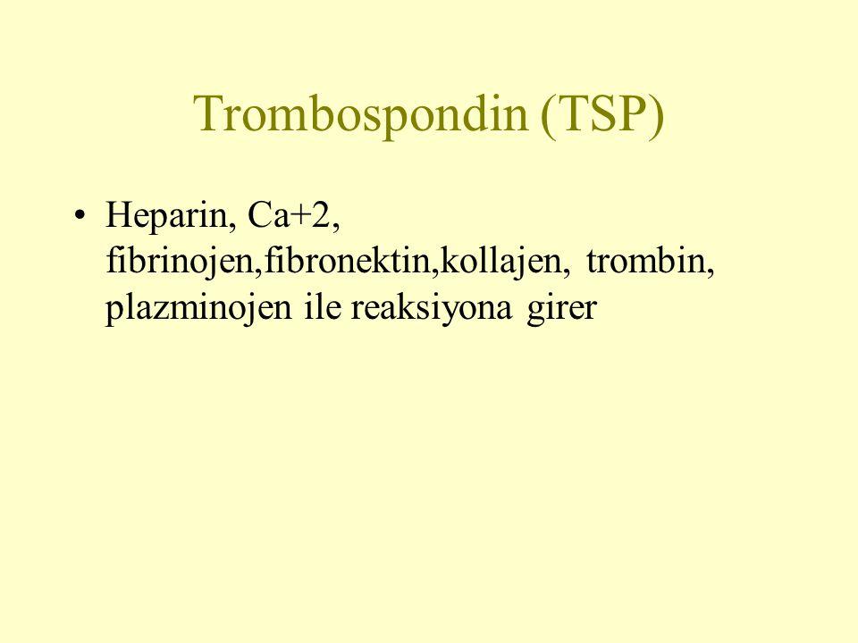 Trombospondin (TSP) Heparin, Ca+2, fibrinojen,fibronektin,kollajen, trombin, plazminojen ile reaksiyona girer