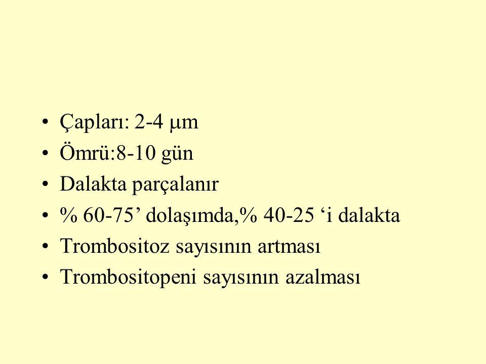 Çapları: 2-4  m Ömrü:8-10 gün Dalakta parçalanır % 60-75' dolaşımda,% 40-25 'i dalakta Trombositoz sayısının artması Trombositopeni sayısının azalmas