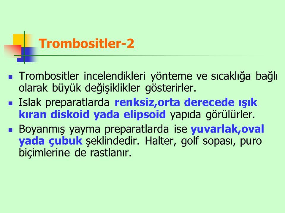 Trombositler-3 Trombositler elektron mikroskoptaki görünümlerine göre üç bölgeye ayrılırlar; 1- Periferik bölge; adezyon ve agregasyon ile ilgilidir.
