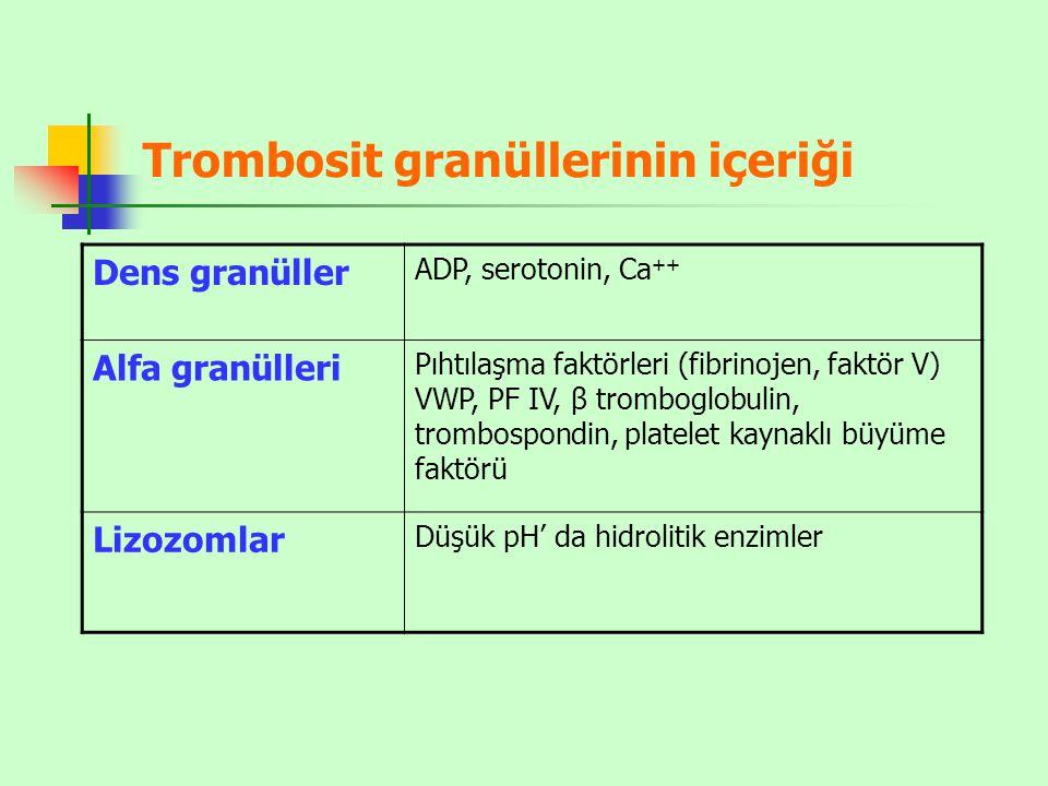 Trombosit granüllerinin içeriği Dens granüller ADP, serotonin, Ca ++ Alfa granülleri Pıhtılaşma faktörleri (fibrinojen, faktör V) VWP, PF IV, β tromboglobulin, trombospondin, platelet kaynaklı büyüme faktörü Lizozomlar Düşük pH' da hidrolitik enzimler