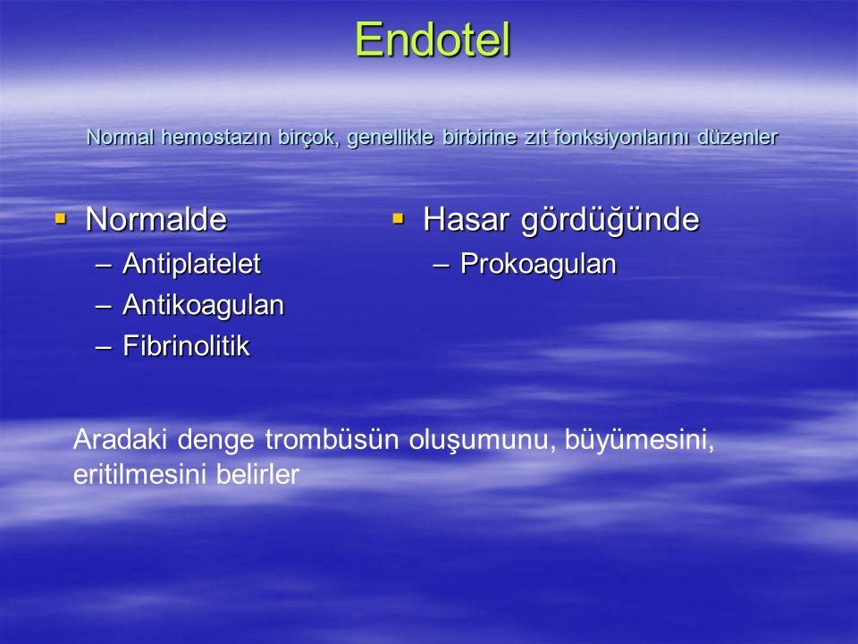 Endotel Normal hemostazın birçok, genellikle birbirine zıt fonksiyonlarını düzenler  Normalde –Antiplatelet –Antikoagulan –Fibrinolitik  Hasar gördüğünde –Prokoagulan Aradaki denge trombüsün oluşumunu, büyümesini, eritilmesini belirler